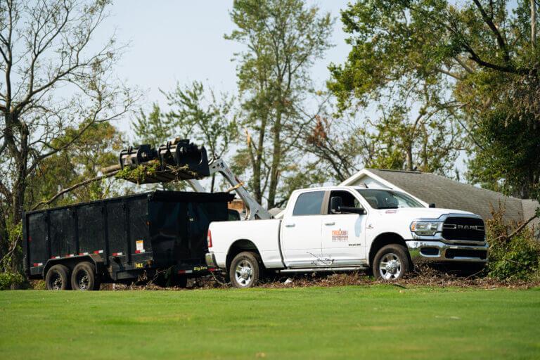 Tree Service Atlanta GA